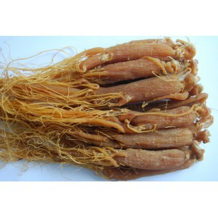 RARE Panax Korean Red Ginseng Root,China,6 years old
